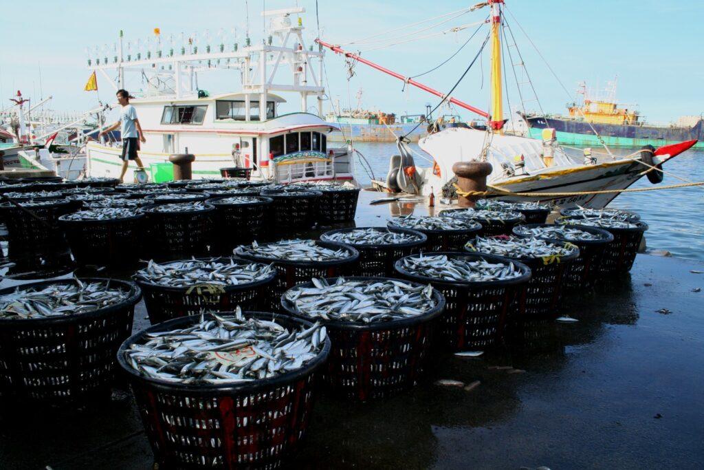 herring-harvest-fishing-boat-landing-catch-boat-1613555-pxhere.com_-1024x683